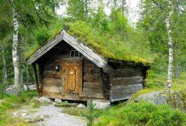 stara-drewniana-jata-z-zielonym-dachem-w-norwegia-27457871.jpg